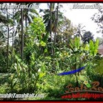 Magnificent LAND FOR SALE IN UBUD TJUB506