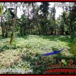 Beautiful LAND IN UBUD FOR SALE TJUB506