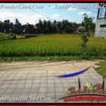 Magnificent LAND FOR SALE IN UBUD TJUB508