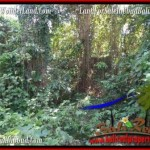 FOR SALE Magnificent PROPERTY LAND IN UBUD TJUB509