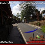 Magnificent LAND FOR SALE IN UBUD TJUB509