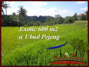 Affordable PROPERTY UBUD BALI 600 m2 LAND FOR SALE TJUB513