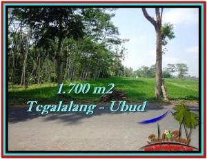Exotic Ubud Tegalalang BALI LAND FOR SALE TJUB518