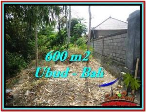 600 m2 LAND SALE IN UBUD TJUB523