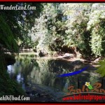 Magnificent PROPERTY Sentral Ubud 4,315 m2 LAND FOR SALE TJUB499
