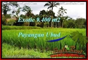Magnificent 9,400 m2 LAND IN UBUD BALI FOR SALE TJUB526