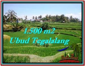 Affordable PROPERTY 1,500 m2 LAND SALE IN UBUD BALI TJUB528