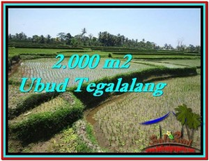 FOR SALE Exotic PROPERTY 2,000 m2 LAND IN UBUD BALI TJUB529