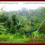 16,500 m2 LAND FOR SALE IN UBUD BALI TJUB494