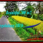 Affordable PROPERTY 700 m2 LAND FOR SALE IN Ubud Tegalalang TJUB497