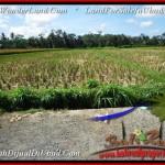 FOR SALE Beautiful 2,800 m2 LAND IN UBUD BALI TJUB498