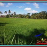 Exotic PROPERTY LAND SALE IN UBUD TJUB513