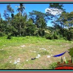 FOR SALE Beautiful PROPERTY 3,500 m2 LAND IN Ubud Tampak Siring TJUB517