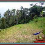 Affordable PROPERTY 12,000 m2 LAND IN Ubud Tampak Siring FOR SALE TJUB520
