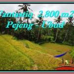 Exotic PROPERTY Ubud Tampak Siring 2,800 m2 LAND FOR SALE TJUB521
