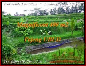 400 m2 LAND IN UBUD BALI FOR SALE TJUB483