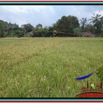 FOR SALE Beautiful PROPERTY 650 m2 LAND IN Ubud Tampak Siring TJUB522