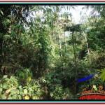 FOR SALE LAND IN Sentral Ubud BALI TJUB523
