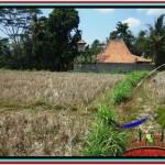 Beautiful PROPERTY LAND IN UBUD BALI FOR SALE TJUB524