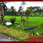 UBUD BALI 9,400 m2 LAND FOR SALE TJUB526