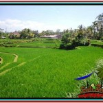 FOR SALE Exotic PROPERTY LAND IN UBUD TJUB528