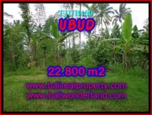 UBUD 22,800 m2 LAND FOR SALE TJUB409