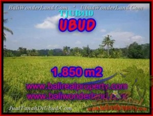 Beautiful PROPERTY LAND IN UBUD FOR SALE TJUB410