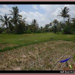 Beautiful PROPERTY LAND IN UBUD BALI FOR SALE TJUB531