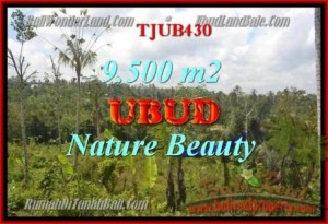 Beautiful 9,500 m2 LAND SALE IN UBUD BALI TJUB430