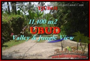 Beautiful 11,400 m2 LAND SALE IN UBUD BALI TJUB431