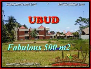 Exotic 500 m2 LAND IN UBUD BALI FOR SALE TJUB435