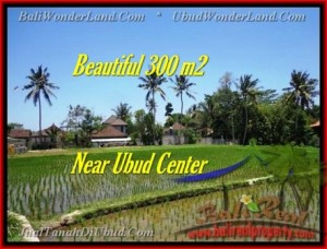 Magnificent PROPERTY 300 m2 LAND FOR SALE IN Sentral Ubud TJUB436