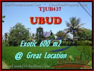 Beautiful PROPERTY 600 m2 LAND IN Sentral Ubud FOR SALE TJUB437