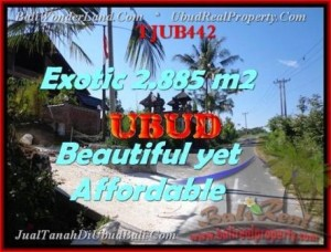 FOR SALE Affordable 2.885 m2 LAND IN UBUD TJUB442