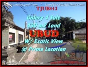 Beautiful PROPERTY UBUD LAND FOR SALE TJUB443