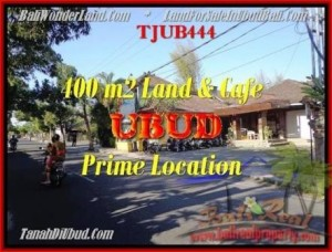 Beautiful PROPERTY UBUD LAND FOR SALE TJUB444