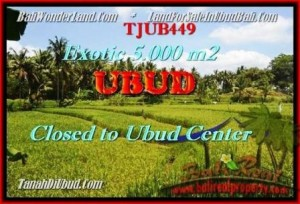 Exotic LAND IN Sentral Ubud BALI FOR SALE TJUB449