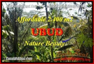 Affordable PROPERTY LAND IN Ubud Pejeng BALI FOR SALE TJUB454