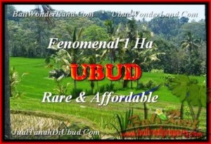 Affordable PROPERTY LAND IN Ubud Pejeng BALI FOR SALE TJUB456