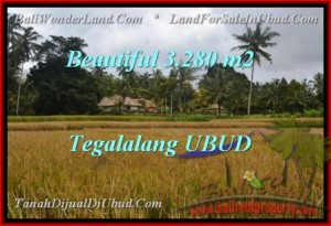 Exotic PROPERTY 3,280 m2 LAND FOR SALE IN Ubud Tegalalang TJUB463