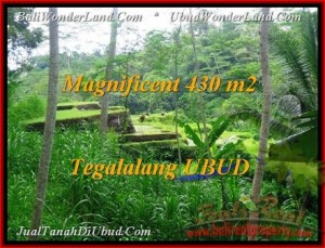 Exotic PROPERTY LAND IN UBUD FOR SALE TJUB466