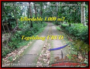 Exotic 1,000 m2 LAND IN UBUD BALI FOR SALE TJUB467
