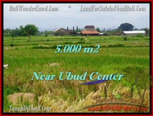 Magnificent 5,000 m2 LAND IN UBUD BALI FOR SALE TJUB474
