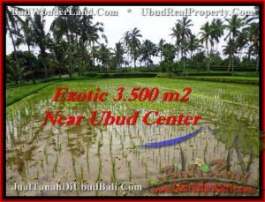 Beautiful PROPERTY LAND SALE IN UBUD TJUB477