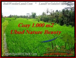 Magnificent PROPERTY LAND SALE IN UBUD TJUB478