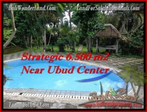6,500 m2 LAND FOR SALE IN UBUD BALI TJUB479