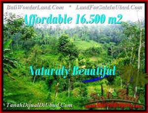 FOR SALE Magnificent 16,500 m2 LAND IN UBUD BALI TJUB494
