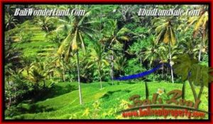 FOR SALE Magnificent 2,500 m2 LAND IN UBUD BALI TJUB496
