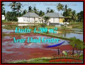 FOR SALE LAND IN Sentral Ubud BALI TJUB502