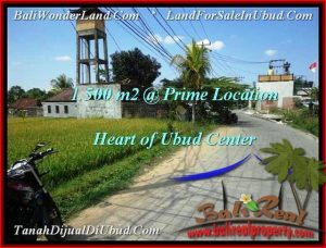 Magnificent LAND IN UBUD FOR SALE TJUB508